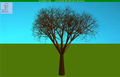 Saturn-7 tree screensaver 1