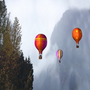 Hot_Air_Balloons 2