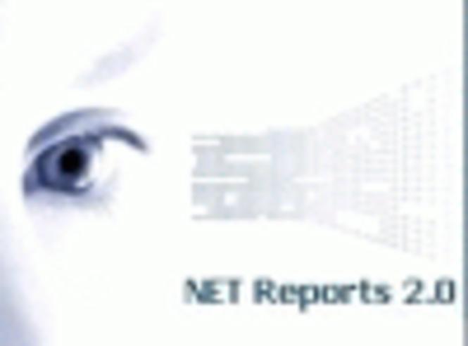 NET Reports Lite Screenshot 1