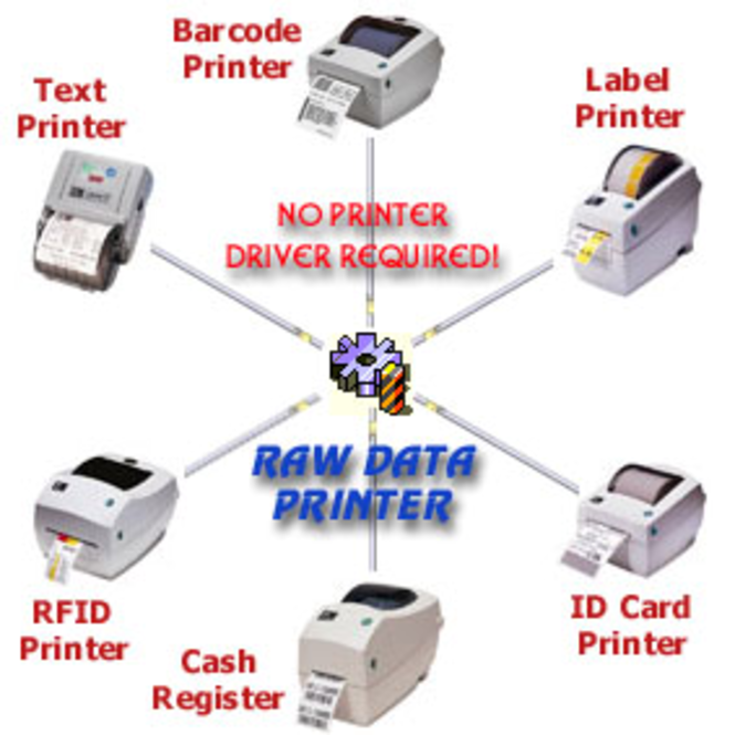 Raw Data Printer Component Screenshot