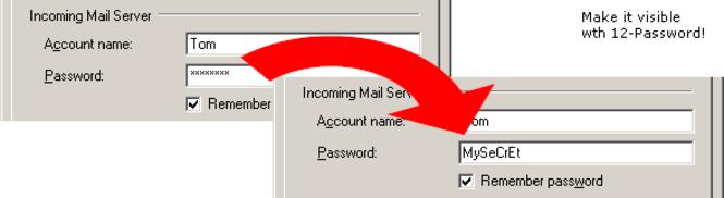 12Ghosts Password Screenshot 1