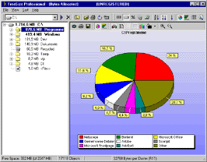 TreeSize Professional - Worldwide Enterprise License Screenshot 1
