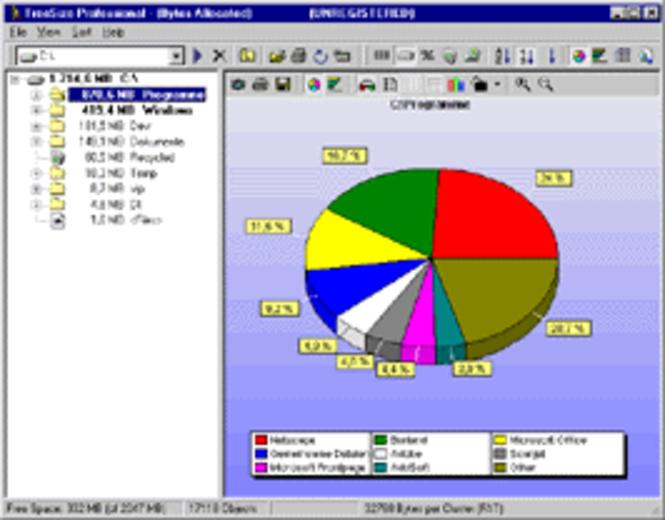 TreeSize Professional - 5-User License Screenshot 1