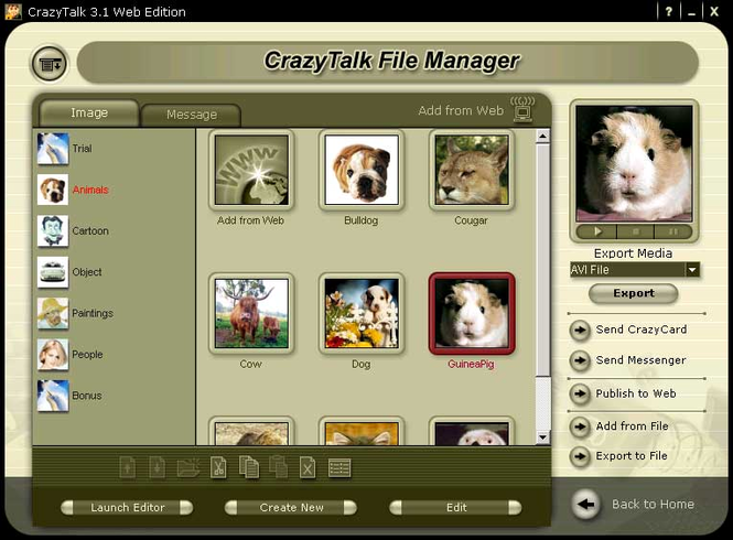 Reallusion CrazyTalk Web Edition Screenshot