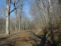 Scenic Drive 004 1