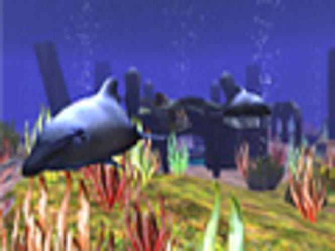 Wilde Delfine 3D Bildschirmschoner Screenshot