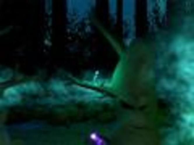 Zauberwald 3D Bildschirmschoner Screenshot