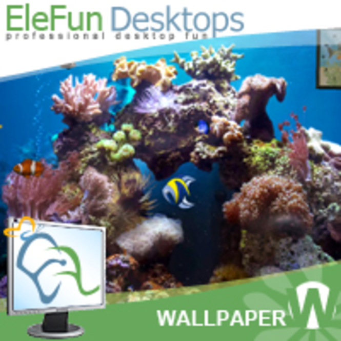 Beautiful Reef - Animated 3D Wallpaper Screenshot 1