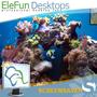 Beautiful Reef - Animated 3D Screensaver 1