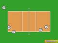 Volleyball screensaver 1