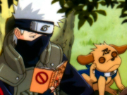 Kakashi Screensaver Screenshot