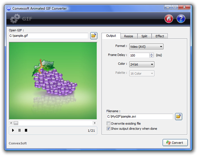 ConvexSoft Animated GIF Converter Screenshot