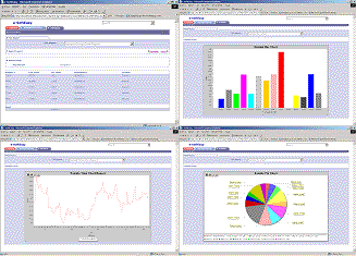 e-SoftEasy Business Analytics Screenshot