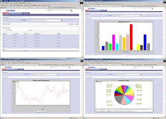 e-SoftEasy Business Analytics Screenshot