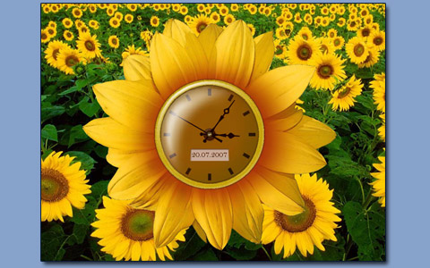 Sunflower clock screensaver Screenshot