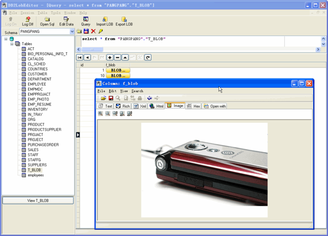 DB2LobEditor Screenshot