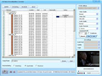 DDVideo DVD to BlackBerry Converter Gain Screenshot