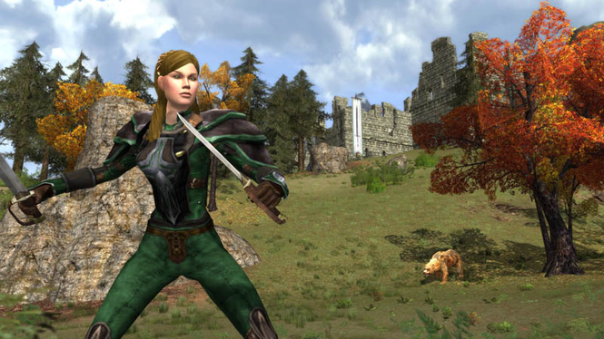 Lord Of The Rings Online Screenshot 5