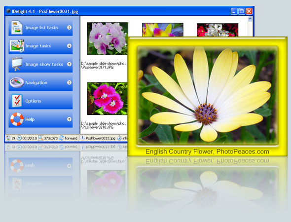 IDelight Screenshot