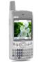 QuickIM Palm 1