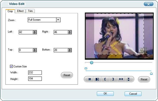 iOrgSoft FLV Converter Screenshot