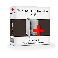 Easy FAT File Undelete Business License Screenshot 1