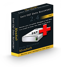 Easy FAT Data Recovery Business License RU Screenshot