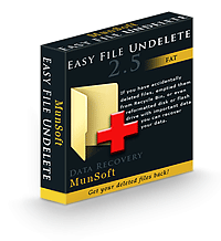 Easy FAT File Undelete Business License RU Screenshot 1