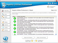 Registry Utilities Professional 2