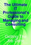 IT Professional's Guide to Managing and Consulting 1