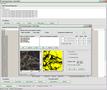GSA Image Analyser Batch Edition 1