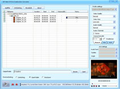 DDVideo DVD to Creative Zen Converter Gain 1