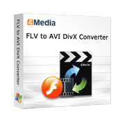 4Media FLV to AVI DivX Converter Screenshot 1
