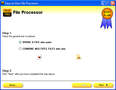 Easy-to-Use File Processor 1