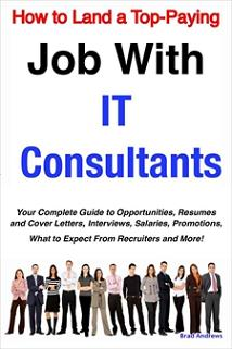 How to Land a Top-Paying Job With IT Consultants: Your Complete Guide to Opportunities, Resumes and Co Screenshot