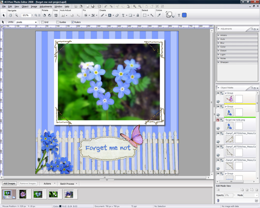 ACDSee Photo Editor 2008 Screenshot