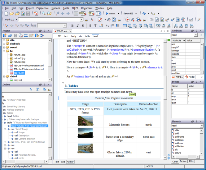 oXygen XML Author Screenshot