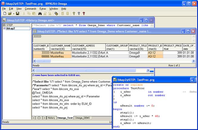 IBYKUS Omega SQL Expert Screenshot