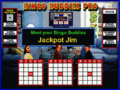 Bingo Buddies Pro 1