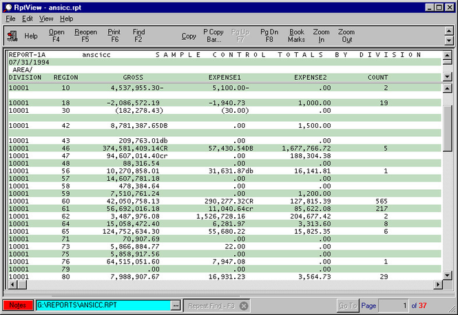 RptView, Report Viewer and Print System Screenshot 1