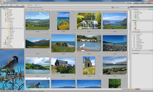 ACDSee Photo Manager 12 Screenshot 1