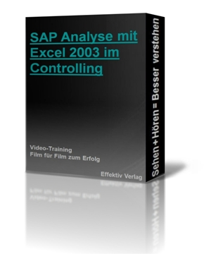 SAP Daten Analyse mit Excel 2003 im Controlling, Videotraining Screenshot