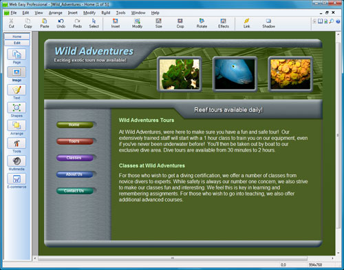 WebEasy Professional Screenshot 1