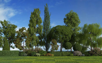 Mentor Plants vol. 1 for Cinema4D Screenshot