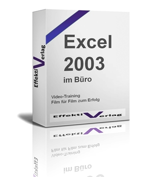 Excel 2003, Videotraining Screenshot