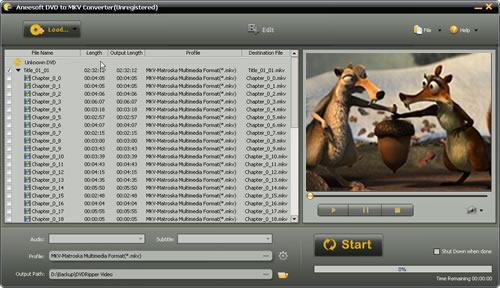 Aneesoft DVD to MKV Converter Screenshot 1