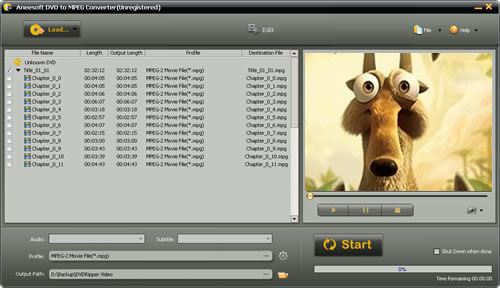 Aneesoft DVD to MPEG Converter Screenshot