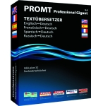 PROMT Professional 9.0 Gigant (ESD) Screenshot 1