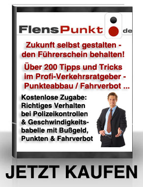 Profi-Verkehrsratgeber Flenspunkt.de | Zukunft selbst gestalten - den Führerschein behalten! Screenshot
