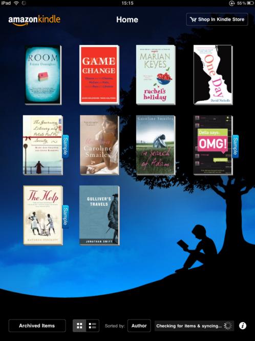 Kindle Screenshot 2